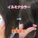 イルミナカラーで美髪にしましょっ! ツヤがない、パサつきやカラーの褪色が気になる方におすすめ