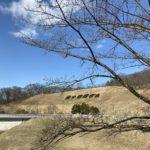 桜スポットの四十四田公園へ下見に。